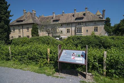 Chateau and vineyard of Ripaille Interpretative Trail