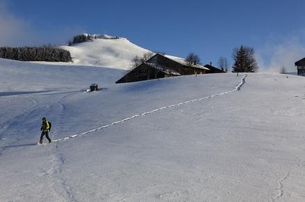 """""""Col de la Balme"""" Snowshoe Trek"""