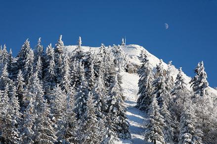 """Randonnée raquettes """"Le Mont Forchat"""" depuis Habère-Poche"""