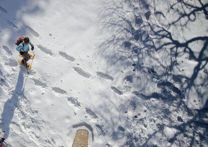 Snowshoeing : Bécret trail