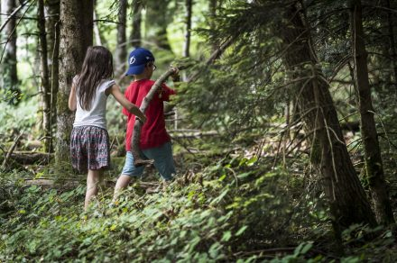 "Nature workshops ""The little Trappers"""