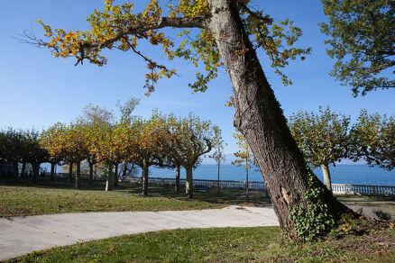 Parc de Corzent