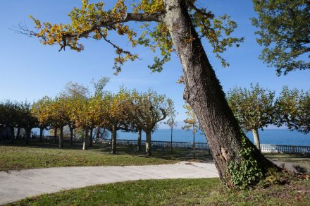Corzent Park