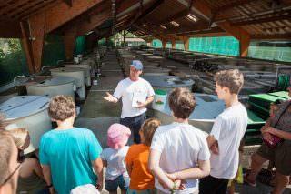 108- snlf et pisciculture