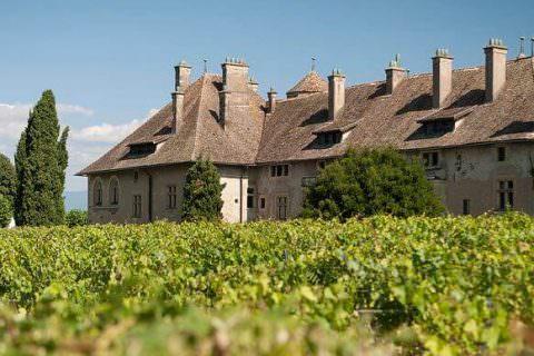 De châteaux en châteaux - Balade intéractive