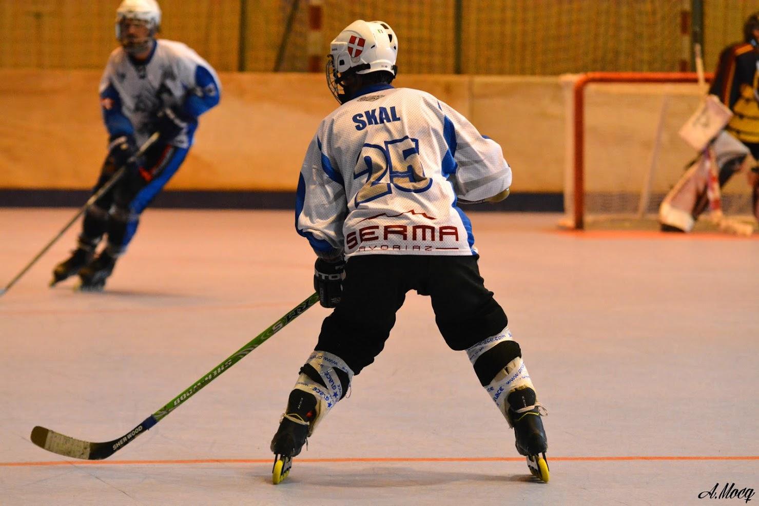 Rollers hockey