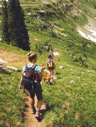 activites sportives cani rando