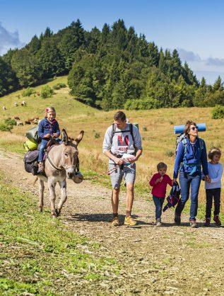 randonnée avec les ânes